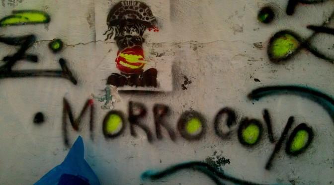 morrocoyo