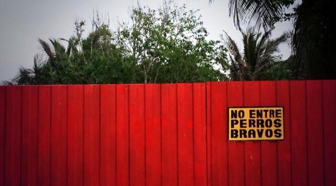 no entre perros bravos Barranquilla