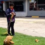 Un niño, un oso amarrado a una cuerda, falta una sonrisa. La calle puede ser muy dura...