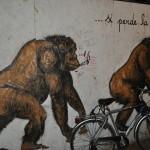 Pisa - Italia64